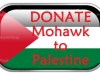 Palestine Flag rectangle glossy button