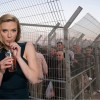 Oxfam drops Johansson over support for illegal settlements