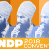Unprecedented Support for Palestinian Cause at NDP Convention Blocked by Party Establishment Maneuvering