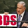 BDS has reached Critical Mass and Critical Pain for Israel