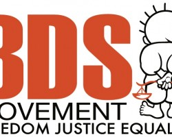 A Conversation about BDS