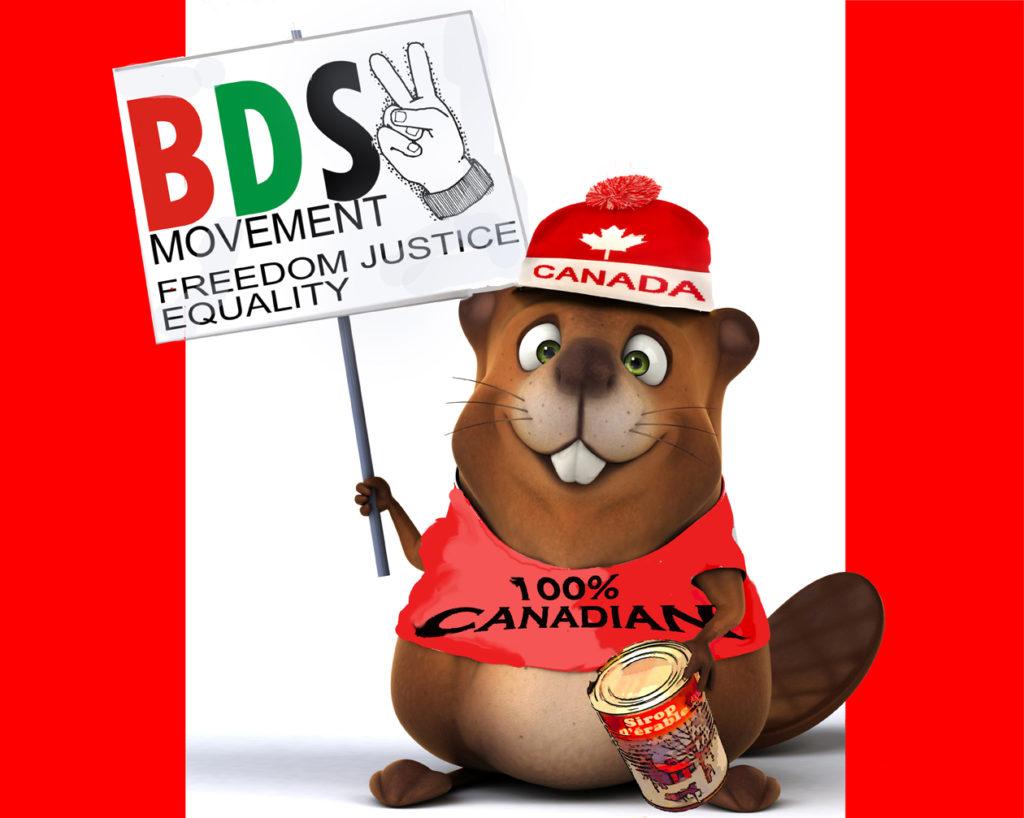 BDS Beaver web