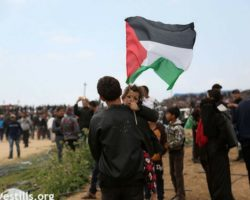 IJV Statement: Great March of Return Met Again with Deadly Israeli Fire