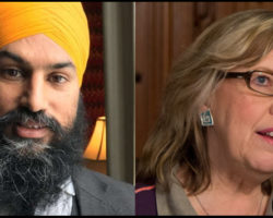 IJV praises NDP and Green Party leaders for denouncing Israel's shootings of Gaza protesters